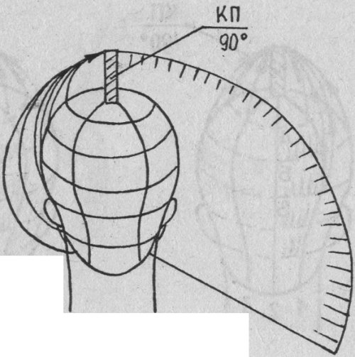 Схема распределения волос после стрижки по длине КП